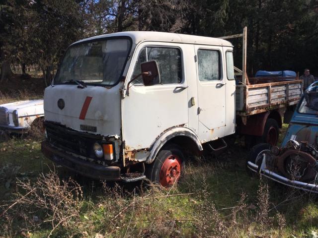 Fiat usata Rif. 12384535